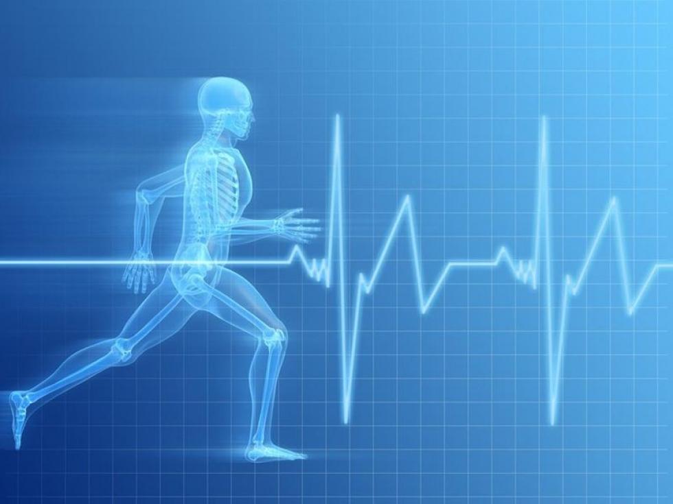 Спортивна медицина і фізична реабілітація